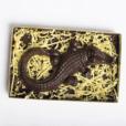 Chocolate Alligator - Le Cookery USA