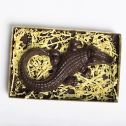 Chocolate Alligator - Le Cookery USA
