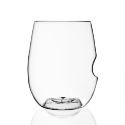 GoVino Plastic Wine Glasses - 12 ounce